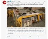 龐貝城挖出「熱食餐廳」 羅馬人拿雞鴨當廣告宣傳