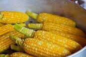 玉米創33年最長漲勢 黃豆價格觸及6年新高
