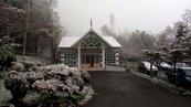 下雪了!台東2312公尺向陽派出所 飄雪成銀白世界