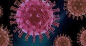 全球嚴陣以待!變種病毒入侵逾50國