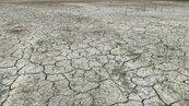 水情吃緊 2021年一期稻作嘉南1.8萬公頃恐先宣布停灌