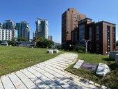 古墓園變綠公園!滬尾「湖南勇古蹟園」即將開放