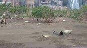 淡水河廢熱點 紅樹林變垃圾林