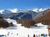 日本乘鞍岳雪崩 滑雪客已全救出1人無心跳