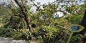 小人國不是只有桃園有!親近大自然首選在鯉魚山小人國