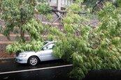 蘇力風強雨大 彰化近十個鄉鎮大淹水