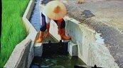 嘉南二期作管制3.15億噸用水 1260名掌水工來「把關」