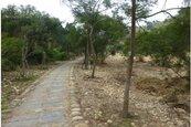 營造龍井竹坑北坑 自然生態環境新風貌