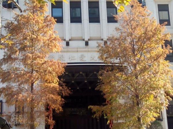 4「仁愛大廈」門口的泛黃大樹,很有異國風情。