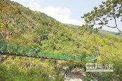 漫遊瓦拉米步道 探索自然之美