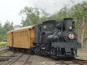 天秤颱風回馬槍 阿里山鐵路和遊樂區同步暫停
