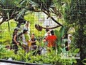 台北動物園 拍片最夯取景地
