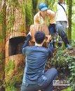 山老鼠盜木 檢警歸返山林