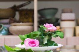 一盆簡單又高雅的花藝,就可立即讓客廳氣氛煥然一新,這可不是神話,人人都可以,只要創意與簡單DIY就可以。