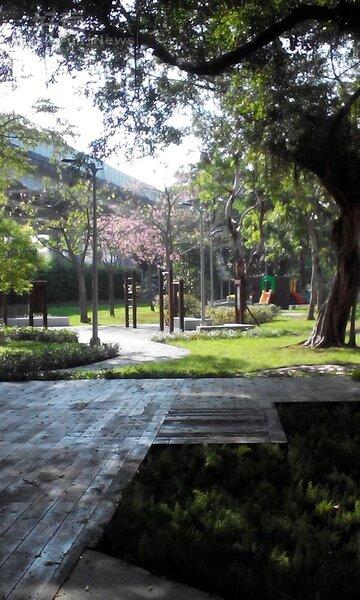 5.走出B1陽光屋,華山公園美景映眼前。