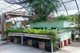大家庭就用大型系統,可分層種植不同蔬果。只是相對的地方也要夠大。