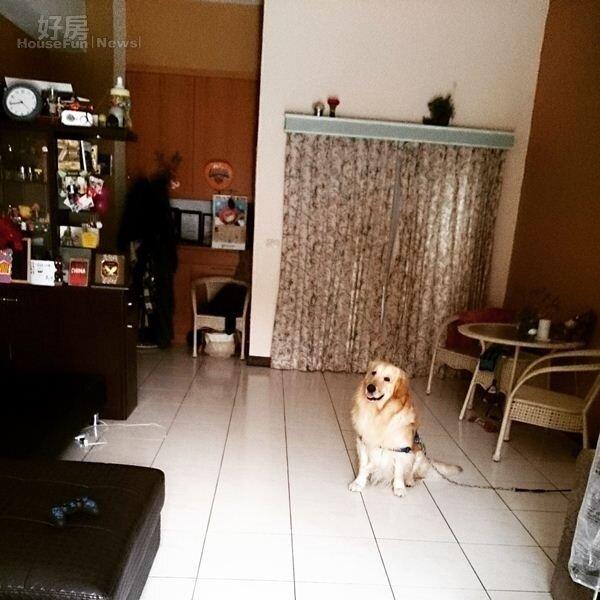 5.李厚豪透露自己超愛乾淨是因為怕蟑螂,大部份傢俱部份也都挑選簡單好擺的為主,方便清理之外也較不易堆積灰塵。